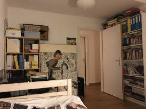 Room For Rent Near Nyon (only Females Are Accepted)