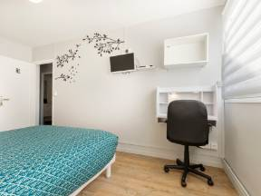 Colocation Toulouse 245037-1